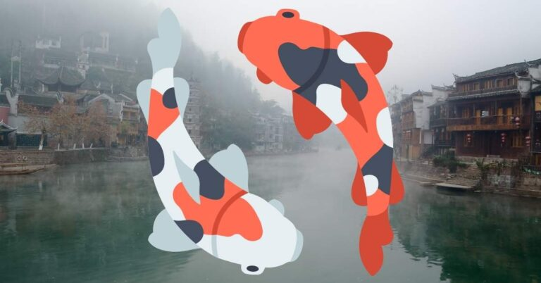 What Does A Koi Fish Represent? The Meaning Behind The World's Bravest Fish
